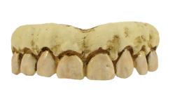 Billy bob skeleton teeth