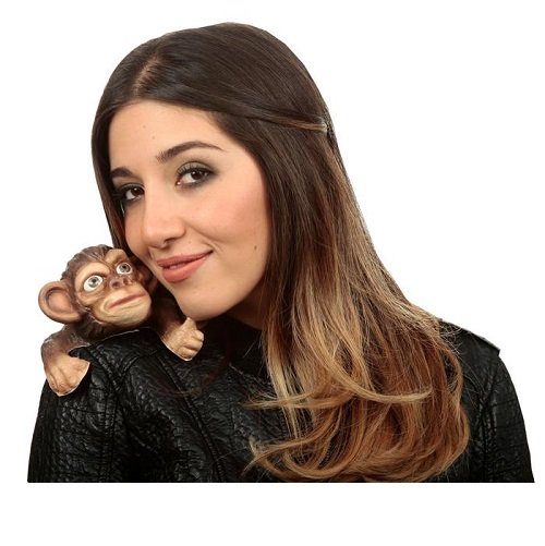 Buddy monkey