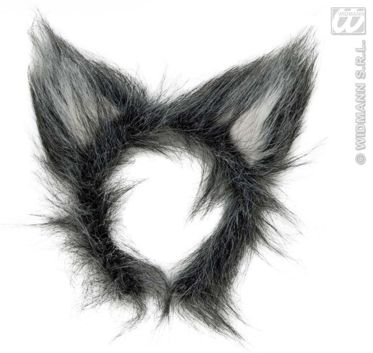 Diadeem wolf