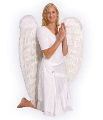 Engelenvleugels wit 120x120