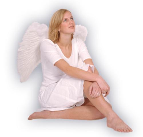 Engelenvleugels wit 65x65