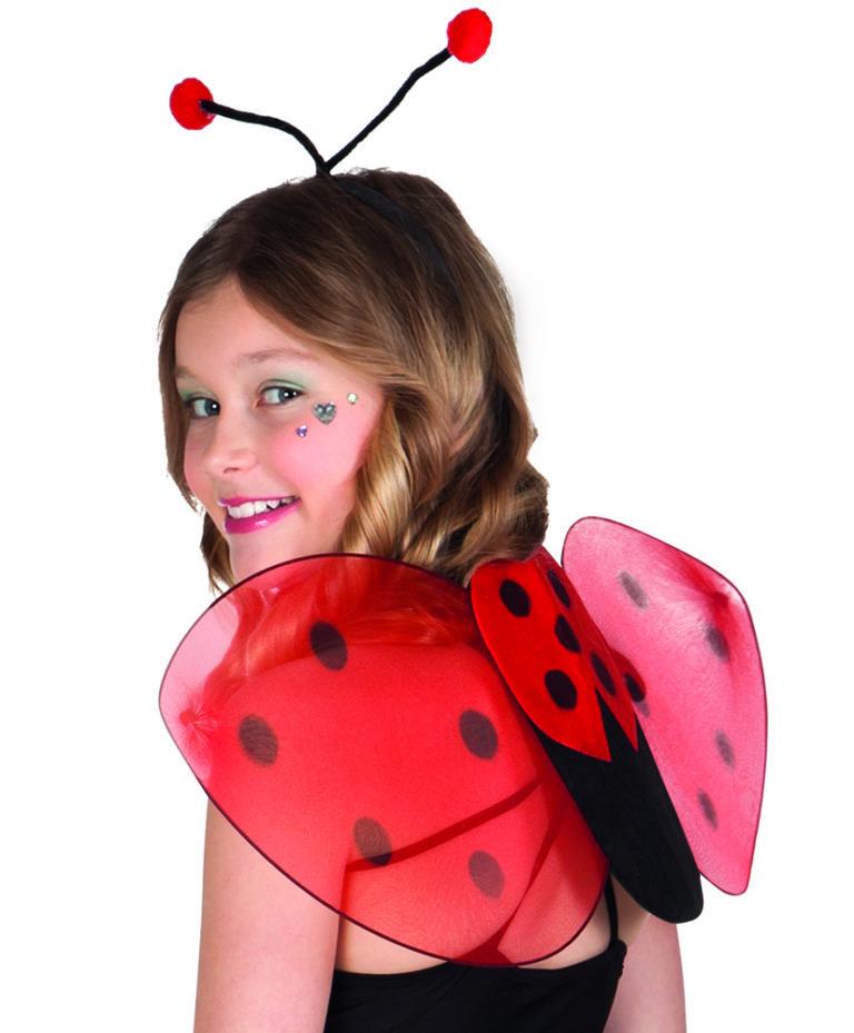 Lieveheersbeestje vleugels en diadeem