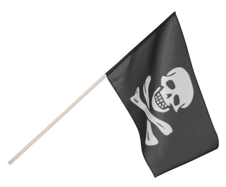 piratenvlag stof op stok