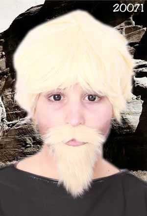 Professor snor en baard blond