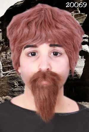 Professor snor en baard bruin