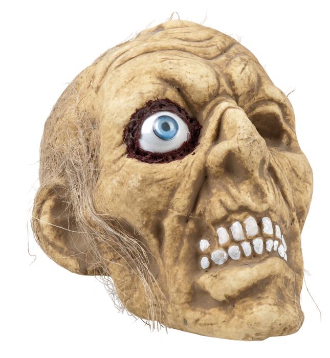 Schedel zombie