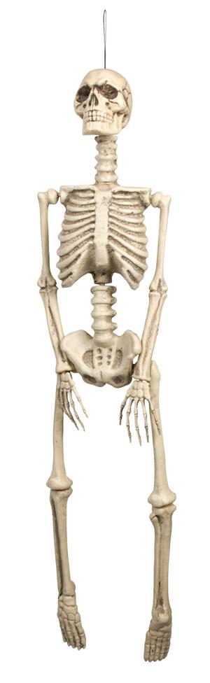 Skelet plastic 92cm