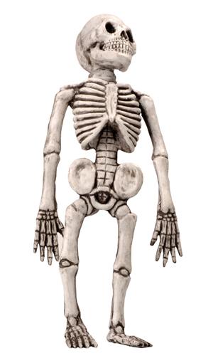 Skelet pop latex