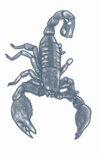 Tatoeage scorpion