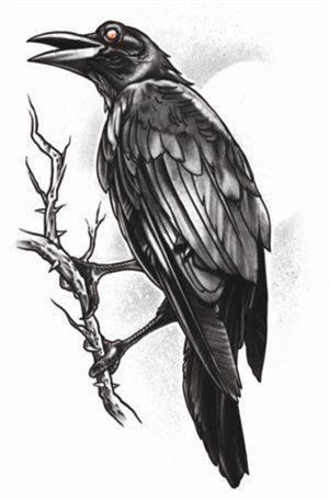 Tatoeage the raven