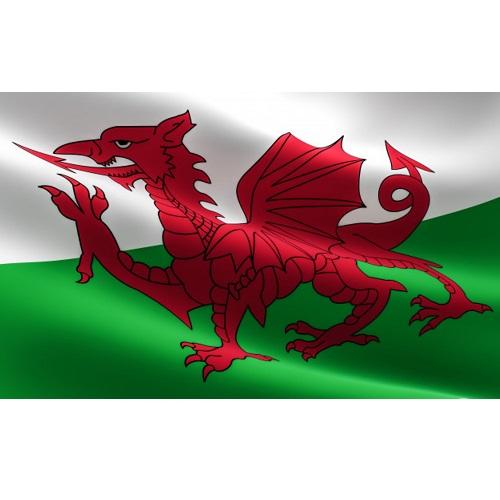 Vlag Wales 90x150cm